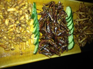 Insect selection