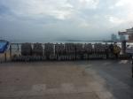 Qingdao Olympic Sailing Centre