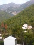 Longwang